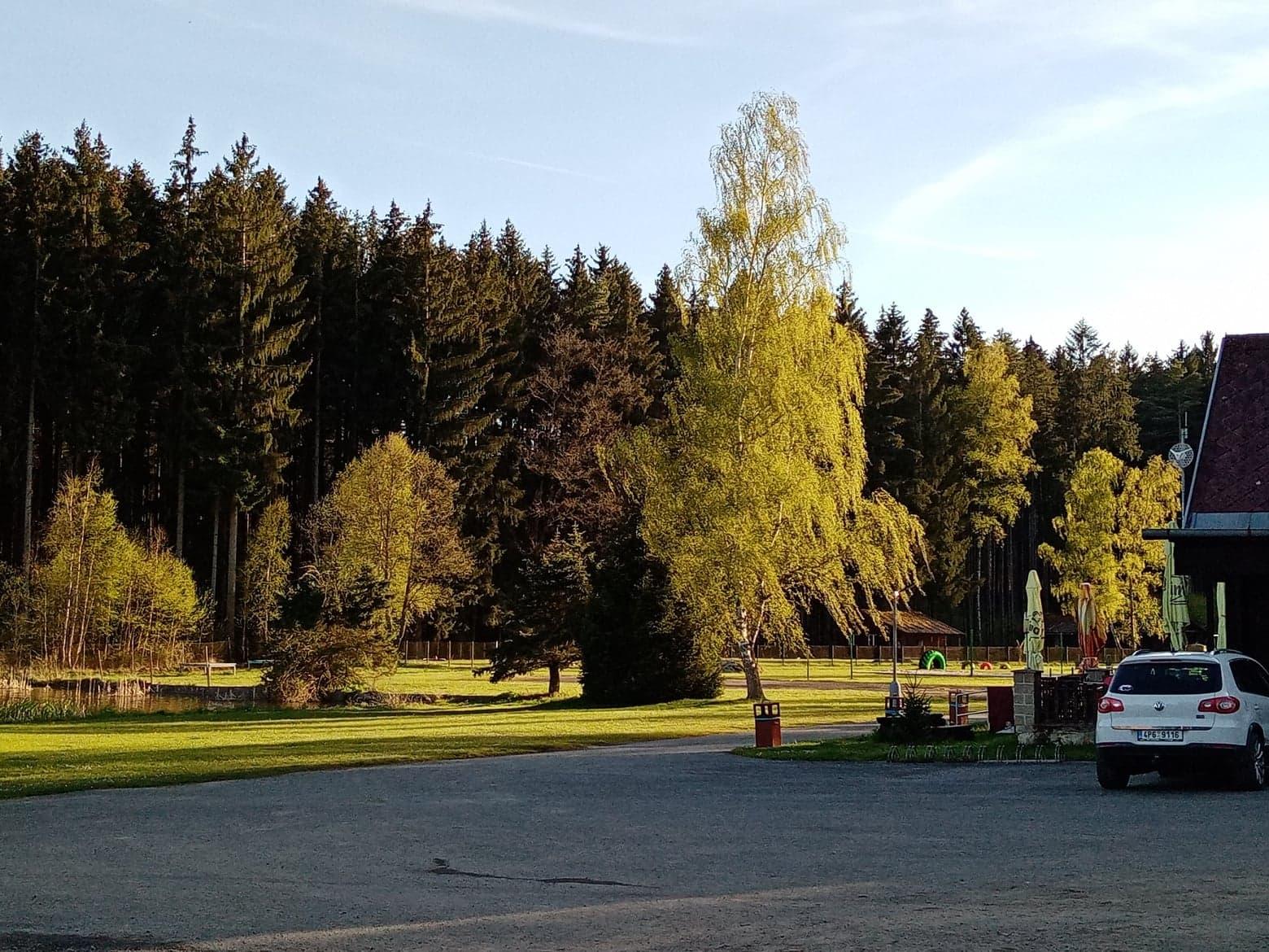 jaro_2021_stromy